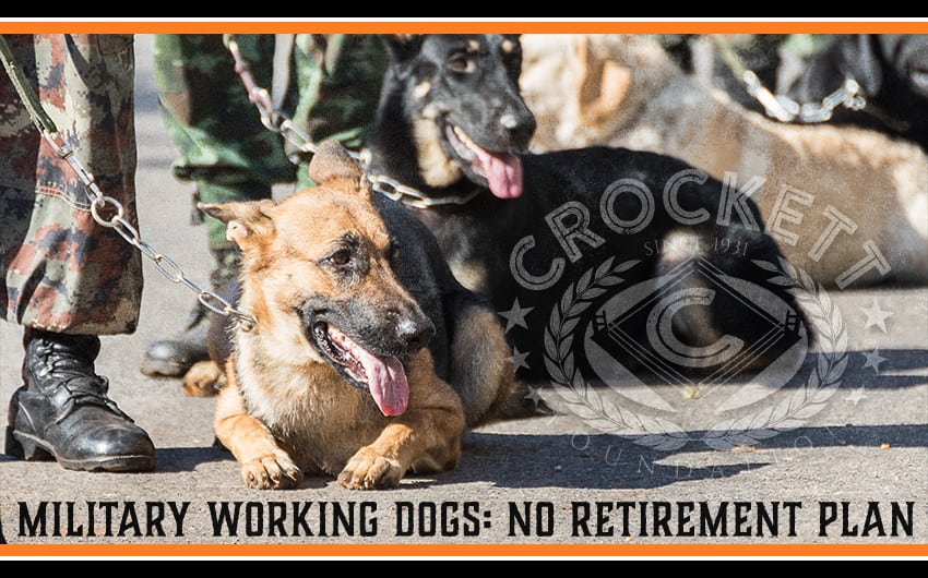 Service Dogs No Retirement Plan