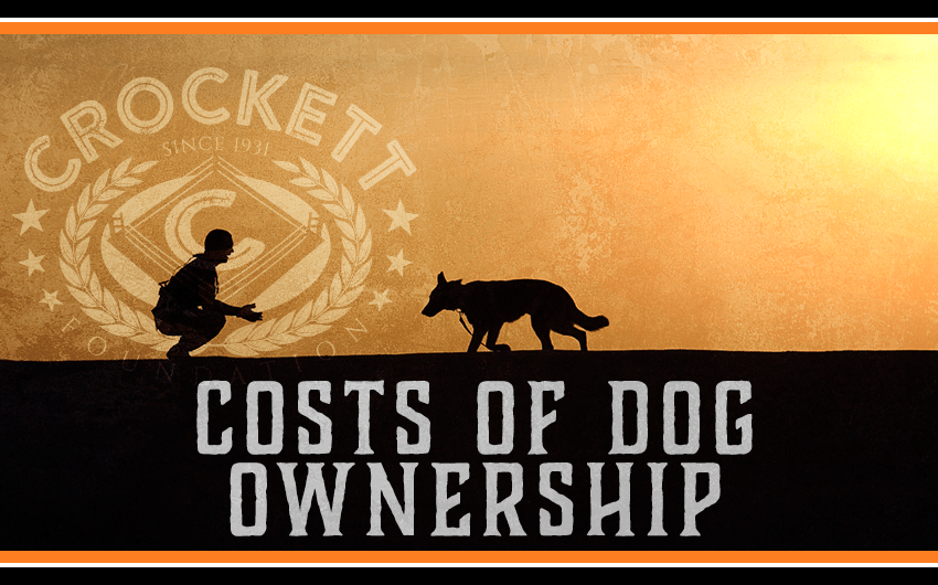 Cost Dog Ownership