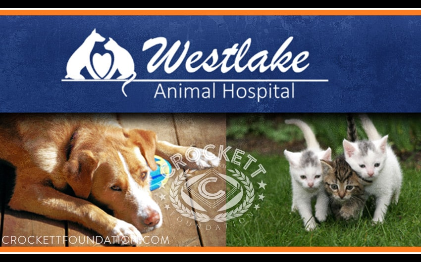 Westlake-Animal-Hospital