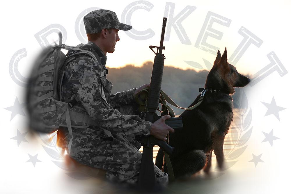 Veteran and Service Dog